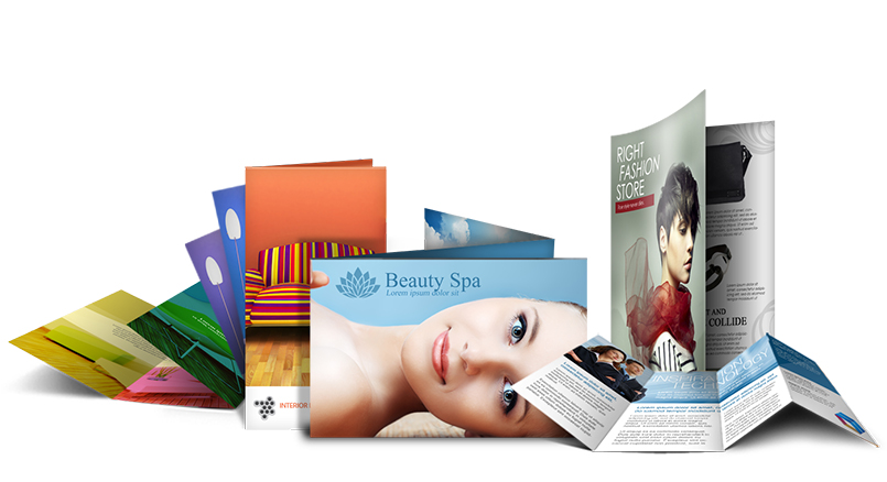 thiet ke catalogue